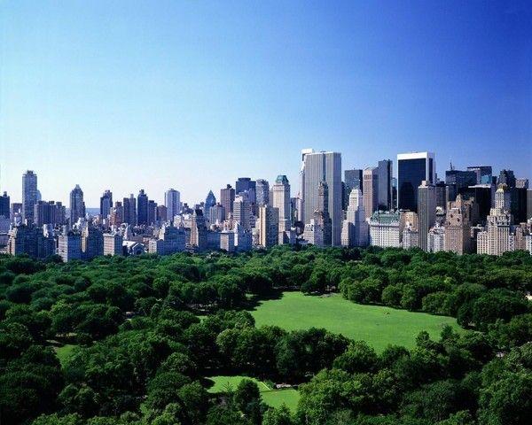 New York 51172c9f
